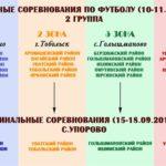 Областная Спартакиада школьников